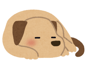 pet_dog_sleep