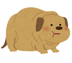 pet_fat_dog